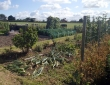 Allotment Open Day