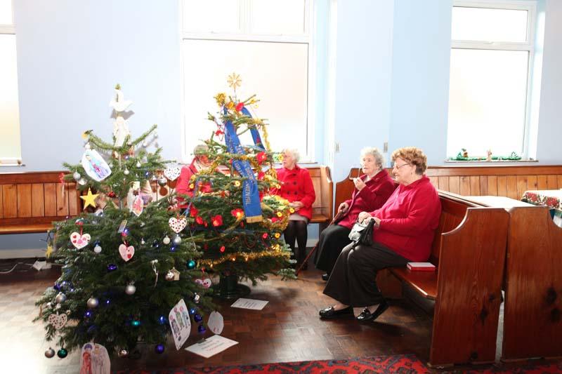 Christmas Trees 2016