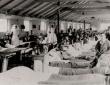 Leeswood Hall Army Hospital 1915
