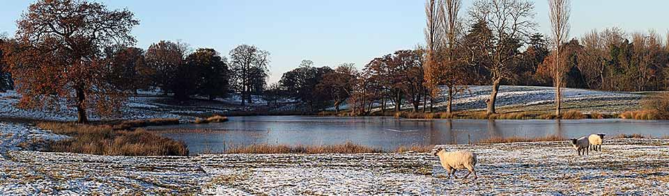 leeswood pond